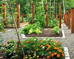 Small Picture Small Vegetable Garden Design Ideas Garden vegetable garden fence