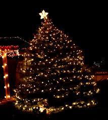 christmas lighting ideas outdoor. Easy Christmas Lights Outdoor At Tree With White Lighting Ideas