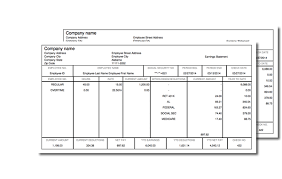 Payroll Stubs Templates Classy Complaint For Permanent Injunction And Other Equitable Relief