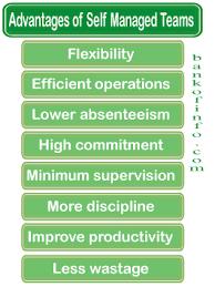 Advantages Of Self Managed Teams Organizational Behavior Self