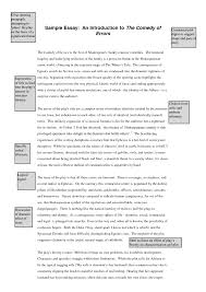 cover letter examples of introductory paragraphs for essays cover letter examples of argumentative essays introduction examples writing a paragraph xexamples of introductory paragraphs for