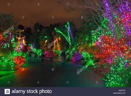 Zoo Lights Seattle Wa15338 00 Washington Colorful Lights Along One Of The