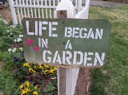 David Burke Kitchen Garden 17 Best Images About Gardening Quotes On Pinterest Gardens