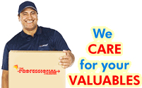 The Professional Couriers Domestic Sector