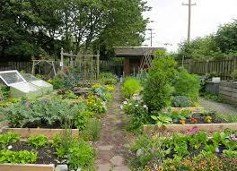 can community gardeners start planting