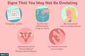 How To Detect Pregnancy Or Ovulation On Your Bbt Chart