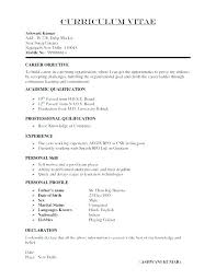 Resume Online Builder Free Build A Resume Online Free Download New Build A Resume Online Free
