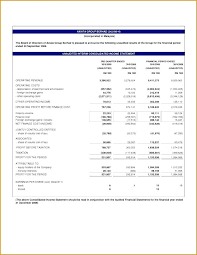 finance report templates finance report template the monthly financial statement template