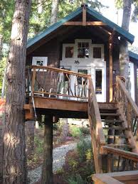 Best 25 Adult Tree House Ideas On Pinterest  Kids Tree Forts How To Build A Treehouse For Adults