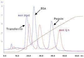 Ion Exchange Chromatography Media Cellufine Amsbio