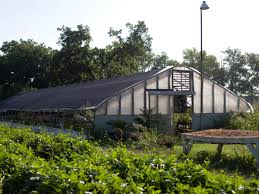 austin garden uprooted local farm gets condos plus more stories