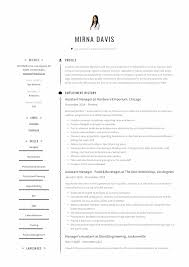 Assistant Manager Resume Writing Guide 12 Samples Pdf 2019