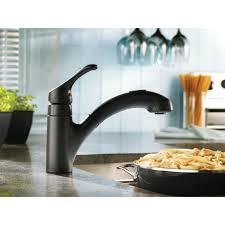Moen Extensa Kitchen Faucet Moen Renzo Single Handle Kitchen Faucet Reviews Wayfair