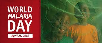 malaria essay phd thesis reports malaria essay