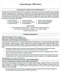 Resume Template Project Manager Download Project Manager Resume