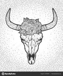 Býčí Lebka S Růží Domorodých Američanů Tribal Stylu Blackwork