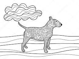 Bullterrier Hond Kleurplaten Boek Voor Volwassenen Vector