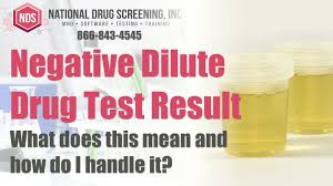 What Is A Negative Dilute Drug Test Result - YouTube