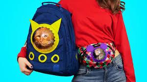 DIY Animal Friendly <b>Pet Carrier Bags</b> - YouTube
