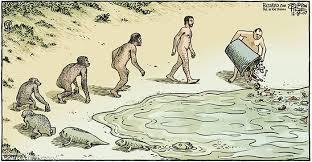 Image result for אבולוציה