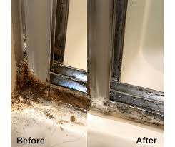 clean shower doors with 2 ings