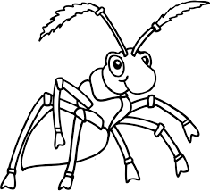 Small Picture Best Ant Coloring Page Black White Ideas Printable Coloring