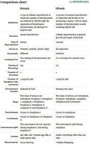 Mitosis Versus Meiosis Chart Mitosis Versus Meiosis Worksheet Worksheet Fun And Printable