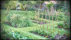 vegetable garden home ideas types on a budget