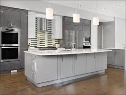 kitchen cabinet spray paintKitchen  Painting Kitchen Cabinets Black Refinishing Old Cabinets