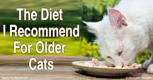 low protein cat food. Hydrolyzed Protein Cat Food Recommended Diet For Older Cats Recommend Low