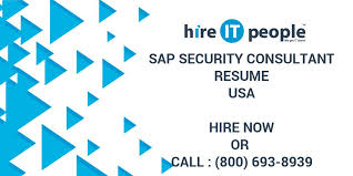 Sap Security Consultant Resume Hire It People We Get It Done