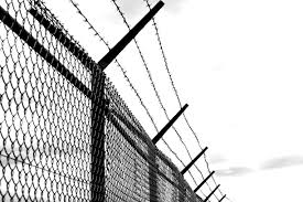 Free Images cold fence barbed wire black and white old mast