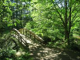 file botanical gardens at asheville bridge 1 jpg