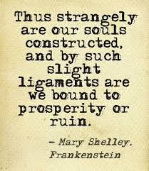 Frankenstein Quotes Impressive Important Quotes Frankenstein Research Paper Help Uhessaykfjs