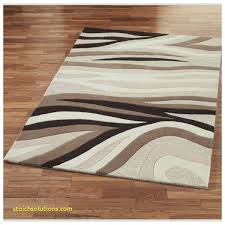 area rugs tampa 0 discount fl r56 tampa