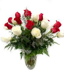 two dozen red white roses boulevard