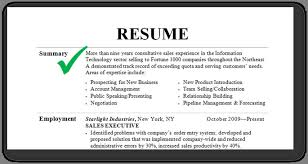 Summary Examples For Resume Summary Example For Resume Best Example Resume Cover Letter 23