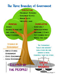 Three Branches Of Government Chart The Three Branches Of Government Tree Poster