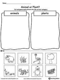 20. free animal and plant sorting worksheet use the animal and plant ...