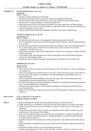Portfolio Analyst Resume Samples Velvet Jobs