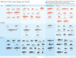 Sustainable Seafood Chart Ocean Fish Stocks Print It Out And Stick It In Your Wallet
