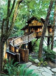 luxurious tree house hotel. Luxurious Tree House Hotel Plain On Home Throughout Address Fir Trees Near The Lake Luxury Treehouses