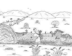 Bộ sưu tập tranh tô màu cánh đồng lúa cho bé thỏa sức tô màu | Phong cảnh,  Bộ sưu tập, Cánh