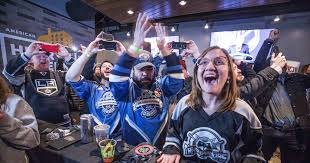 Image result for seattle hockey