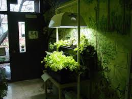 Hydroponic Kitchen Herb Garden 27 Indoor Kitchen Herb Garden For Better Interior Designs Vybbizcom