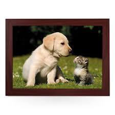 cute puppy and kitten best friends. Modren Cute Image Is Loading CutePuppyAndKittenBestFriendsPersonalisedPadded To Cute Puppy And Kitten Best Friends T