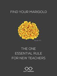 find your marigold the one essential rule for new teachers cult find your marigold the one essential rule for new teachers cult of pedagogy