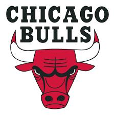 Chicago Bulls logo vector … | cakes | Pinte…