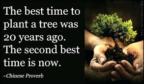 best time of year to plant what is the best time to plant a garden com best time of year to plant