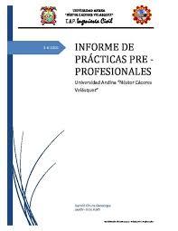 Informe Profesional Informe De Practicas Pre Profesionales Udocz